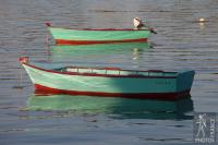 Twin rowboats