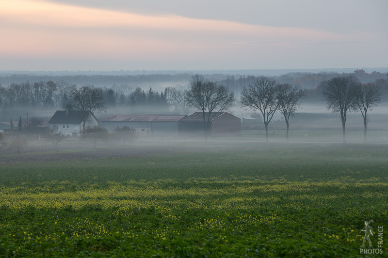 Mist in the farm