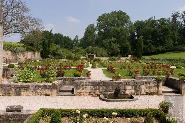 Abbey rose garden