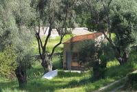 Hut in an olive grove
