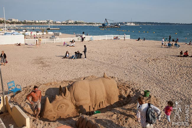 Cannes beach rhino