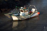Fishing boat in the Vernier marsh