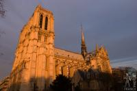 Notre Dame cathedral in the evening